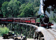 PUFFING BILLY PARK
